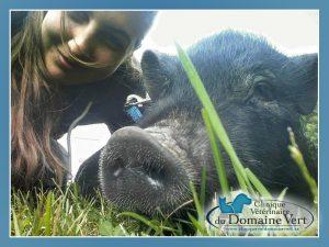 Emilie Carpini-Gauthier, Technicienne en santé animale | Équipe Clinique vétérinaire du domaine vert, Mirabel