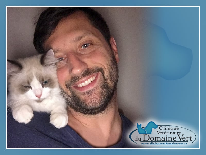 Patrick Lewis | Équipe Clinique vétérinaire du domaine vert, Mirabel
