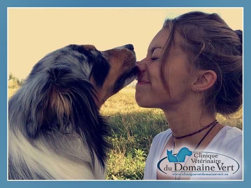 Laetitia Quehen | Équipe Clinique vétérinaire du domaine vert, Mirabel