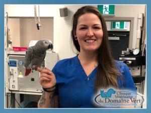 Laura-Kathryn Rideout | Équipe Clinique vétérinaire du domaine vert, Mirabel
