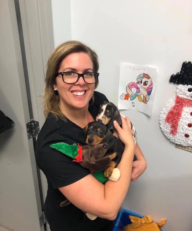 Gen B | Équipe Clinique vétérinaire du domaine vert, Mirabel