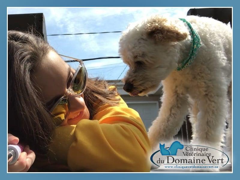 Émilie Laroque | Équipe Clinique vétérinaire du domaine vert, Mirabel
