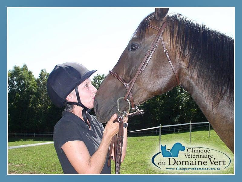 Linda Lamarche | Équipe Clinique vétérinaire du domaine vert, Mirabel