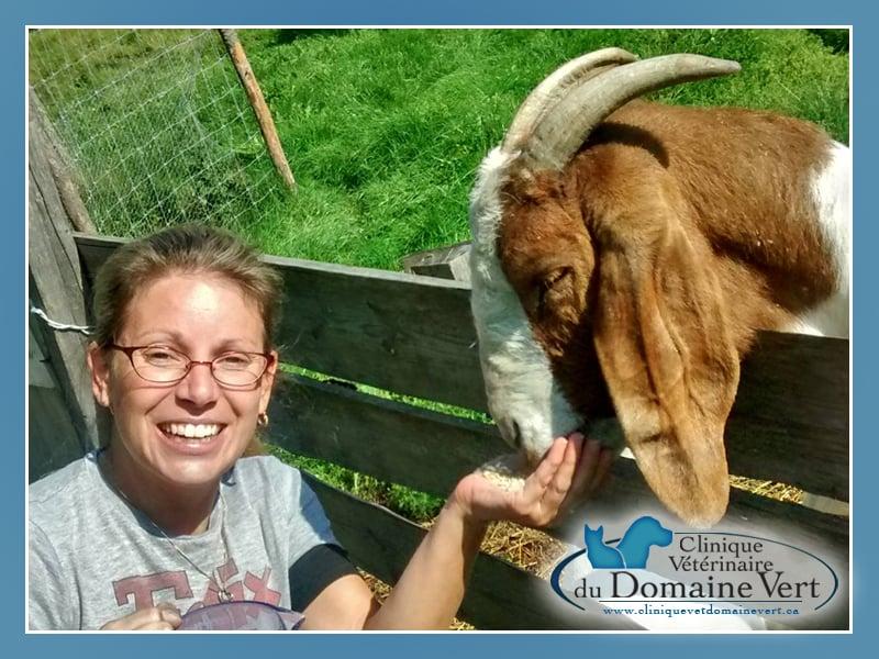 Sandra Lavoie-Éthier | Équipe Clinique vétérinaire du domaine vert, Mirabel