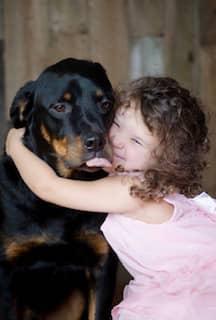 clinique veterinaire domaine vert mirabel client satisfaits 00037