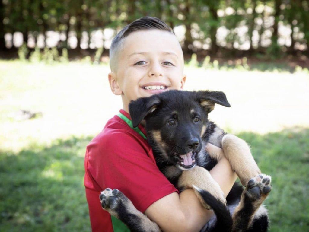 clinique veterinaire domaine vert mirabel client satisfaits 00038