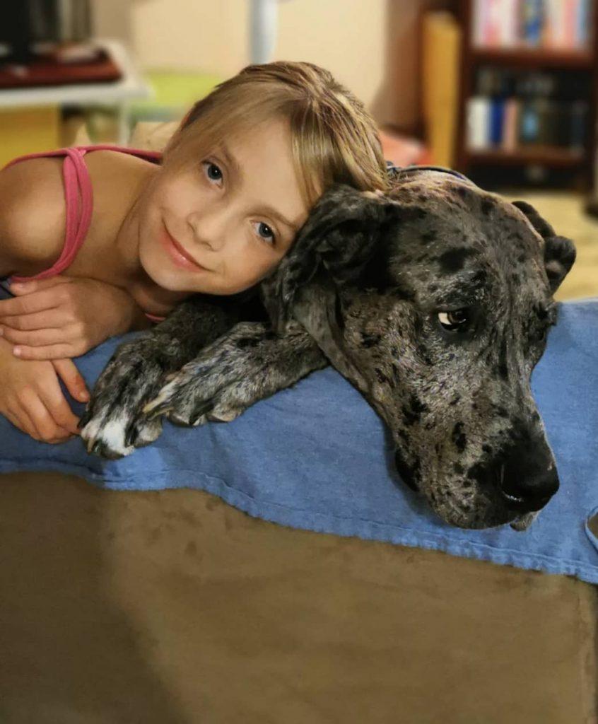 clinique veterinaire domaine vert mirabel client satisfaits 00041